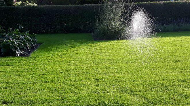 Grastotaal gras beregening
